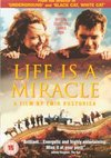 Life is a Miracle DVD