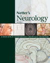 Netter`s Neurology
