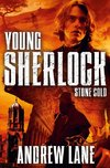 Young Sherlock Holmes 07. Stone Cold
