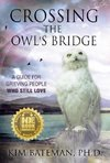 Crossing the Owl's Bridge
