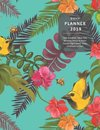 Daily Planner 2019 Time Schedule, Meal Plan, Weather/Mood & Water Tracker, Top 3 Goals, Tasks, Gratitude Section: Tropical Cover Design - One Page Per