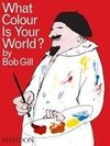 Gill, B:  What Colour is Your World?