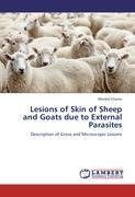 Lesions of Skin of Sheep and Goats due to External Parasites