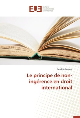 Le principe de non-ingérence en droit international