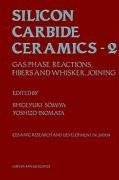 Silicon Carbide Ceramics