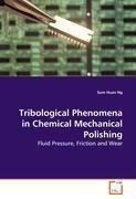 Tribological Phenomena in Chemical Mechanical  Polishing